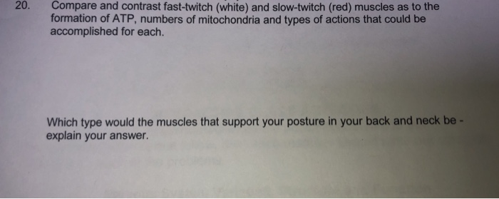 20. Compare and contrast fast-twitch (white) and slow-twitch (red) muscles as to the formation of ATP, numbers of mitochondria and types of actions that could be accomplished for each. Which type would the muscles that support your posture in your back and neck be explain your answer.