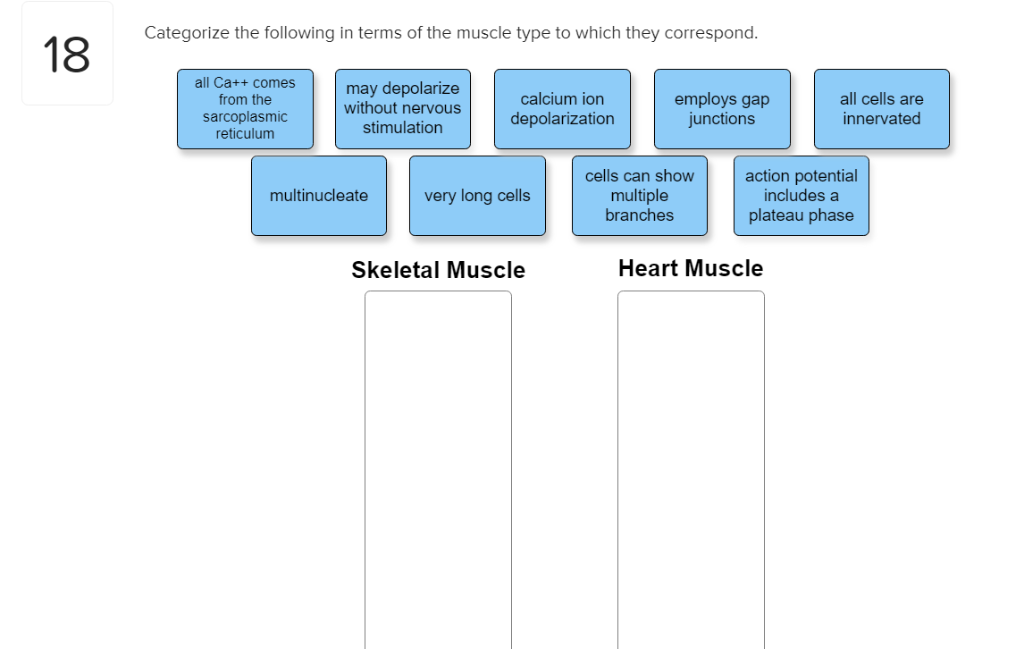 Categorize the following in terms of the muscle type to which they correspond. 18 all Ca++ comes from the sarcoplasmic reticu