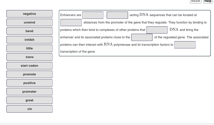 Reset Help negative Enhancers are acting DNA sequences that can be located at unwind distances from the promoter of the gene that they regulate. They function by binding to DNA and bring the proteins which then bind to complexes of other proteins that enhancer and its associated proteins close to the proteins can then interact with RNA polymerase and its transcription factors to transcription of the gene. bend of the regulated gene. The associated inhibit little trans start codon promote positive promoter great cis