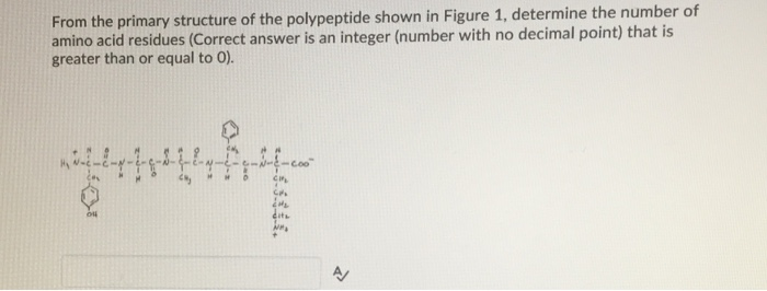From the primary structure of the polypeptide shown in Figure 1, determine the number of amino acid residues (Correct answer is an integer (number with no decimal point) that is greater than or equal to O)