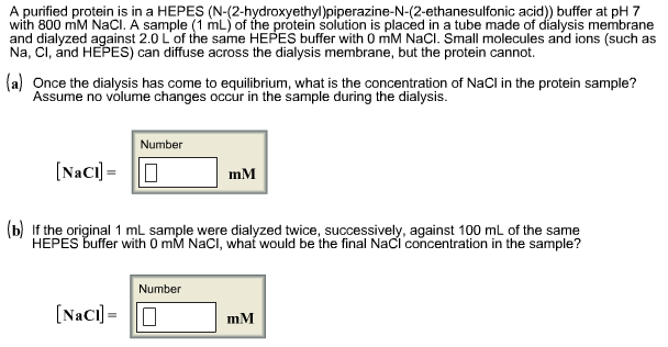 A purified protein is in a HEPES (N-(2-hydroxyethyl)piperazine-N-(2-ethanesulfonic acid)) buffer at pH 7 with 800 mM NaCI. A sample (1 mL) of the protein solution is placed in a tube made of dialysis membrane and dialyzed against 2.0 L of the same HEPES buffer with 0 mM NaCI. Small molecules and ions (such as ) can diffuse across the dialysis membrane, but the protein cannot. aOnce the dialysis has come to equilibrium, what is the concentration of NaCI in the protein sample? Assume no volume changes occur in the sample during the dialysis. Number NacimM (b) If the original 1 mL sample were dialyzed twice, successively, against 100 mL of the same HEPES buffer with 0 mM NaCI, what would be the final NaCl concentration in the sample? Number NaCl]