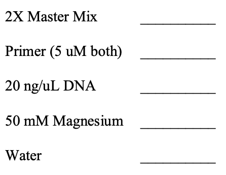2X Master Mix Primer (5 uM both) 20 ng/uL DNA 50 mM Magnesium Water