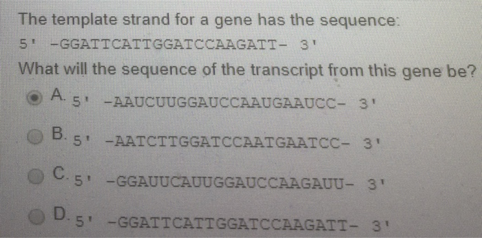 The template strand for a gene has the sequence: 5-GGATTCATTGGATCCAAGATT- 3 What will the sequence of the transcript from this gene be? O.5 AAUCUUGGAUCCAAUGAAUCC- 3 5-GGAUUCAUUGGAUCCAAGAUU-3 5-GGATTCATTGGATCCAAGATT-3