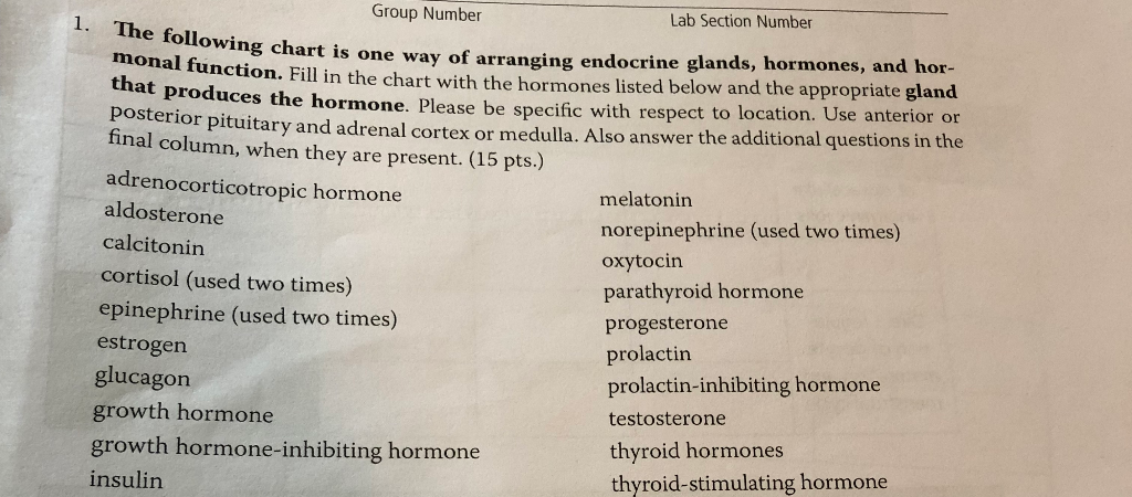 Group Number Lab Section Number The following chart is one way of arranging endocrine glands, hormoncs, and hor- monal functi