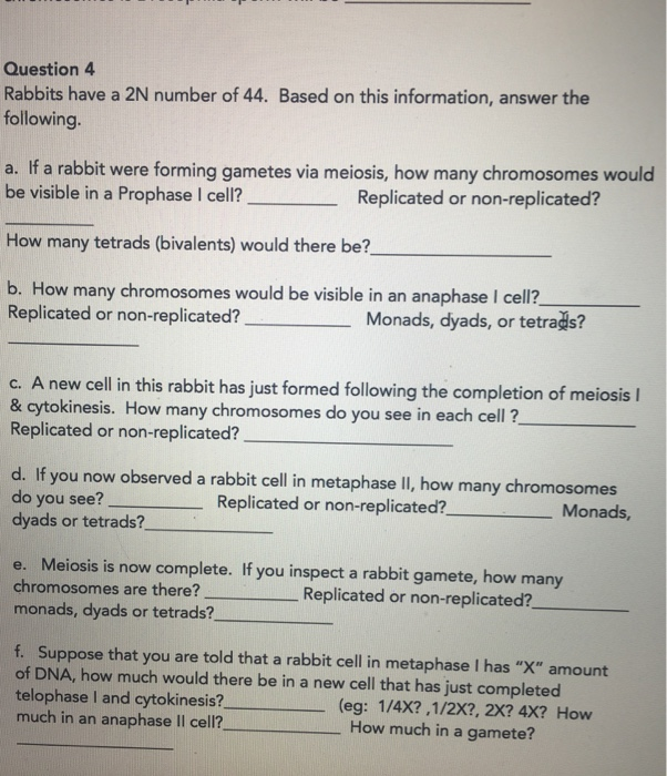 Question 4 Rabbits have a 2N number of 44. Based on this information, answer the following. a. If a rabbit were forming gametes via meiosis, how many chromosomes would be visible in a Prophase I cell? Replicated or non-replicated? How many tetrads (bivalents) would there be? b. How many chromosomes would be visible in an anaphase I cell? Replicated or non-replicated? Monads, dyads, or tetrads? c. A new cell in this rabbit has just formed following the completion of meiosis l & cytokinesis. How many chromosomes do you see in each cell ? Replicated or non-replicated? d. If you now observed a rabbit cell in metaphase II, how many chromosomes do you see? dyads or tetrads? Replicated or non-replicated? Monads e. Meiosis is now complete. If you inspect a rabbit gamete, how many chromosomes are there? monads, dyads or tetrads? Replicated or non-replicated? f. Suppose that you are told that a rabbit cell in metaphase I has X amount of DNA, how much would there be in a new cell that has just completed telophase I and cytokinesis? much in an anaphase ll cell? (eg: 1/4X?,1/2X?, 2X? 4X? How How much in a gamete?