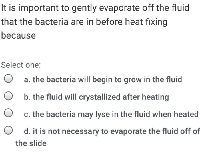 It is important to gently evaporate off the fluid that the bacteria are in before heat fixing because Select one: O a. the bacteria will begin to grow in the fluid O b. the fluid will crystallized after heating O c. the bacteria may lyse in the fluid when heated O d. it is not necessary to evaporate the fluid off of the slide