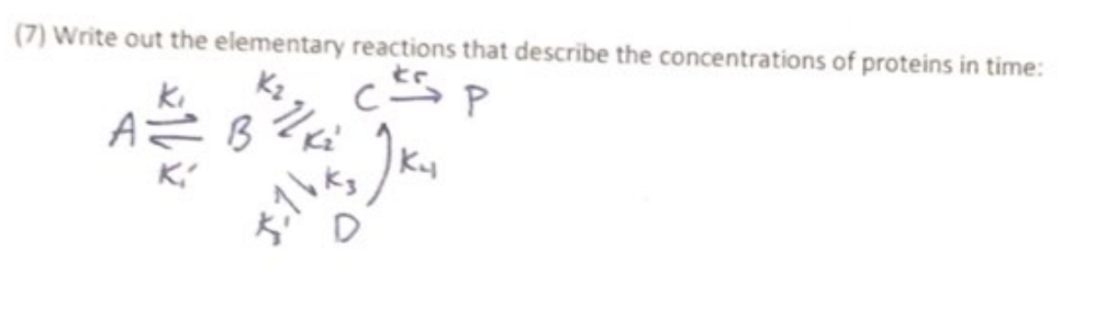(7) Write out the elementary reactions that describe the concentrations of proteins in time: ki