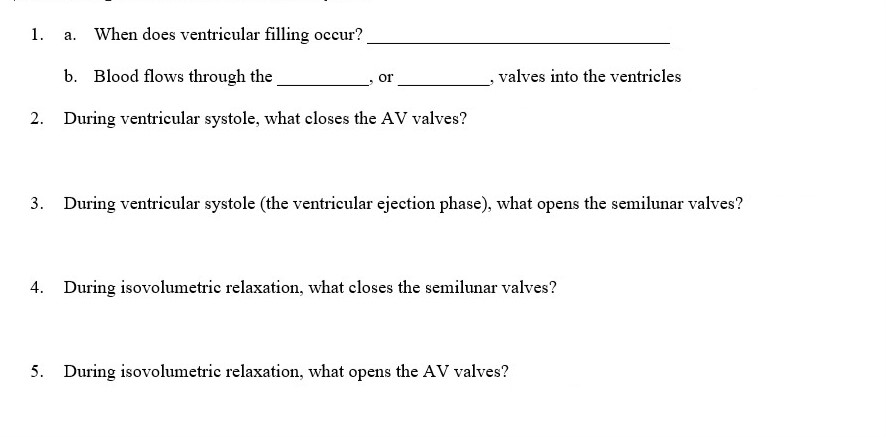 When does ventricular filling occur? b. Blood flows through the. During ventricular systole, what closes the AV valves? 1. a. , valves into the ventricles 2. 3. During ventricular systole (the ventricular ejection phase), what opens the semilunar valves? 4. During isovolumetric relaxation, what closes the semilunar valves? 5. During isovolumetric relaxation, what opens the AV valves?