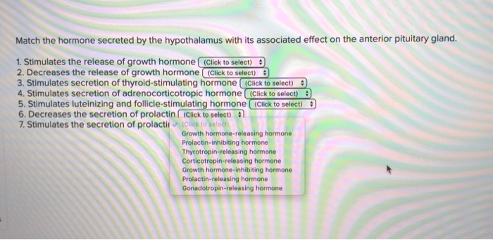Match the hormone secreted by the hypothalamus with its associated effect on the anterior pituitary gland. 1. Stimulates the
