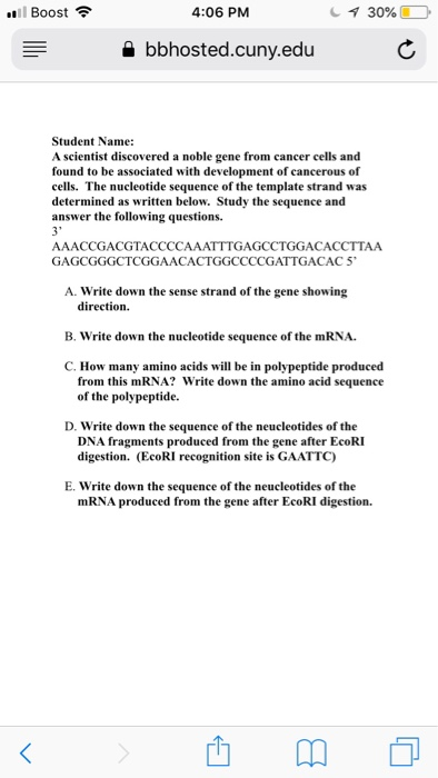 1 Boost令 4:06 PM bbhosted.cuny.eduC Student Name: A scientist discovered a noble gene from cancer cells and found to be associated with development of cancerous of cells. The nucleotide sequence of the template strand was determined as written below. Study the sequence and answer the following questions. 3 AAACCGACGTACCCCAAATTTGAGCCTGGACACCTTAA GAGCGGGCTCGGAACACTGGCCCCGATTGACAC 5 A. Write down the sense strand of the gene showing direction B. write down the nucleotide sequence of the mRNA. C. How many amino acids will be in polypeptide produced from this mRNA? Write down the amino acid sequence of the polypeptide. D. Write down the sequence of the neucleotides of the DNA fragments produced from the gene after EcoRI digestion. (EcoRI recognition site is GAATTC) E. Write down the sequence of the neucleotides of the mRNA produced from the gene after EcoRI digestion.