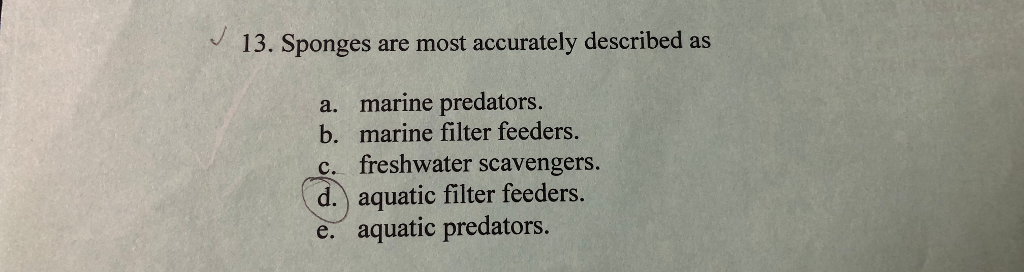 13. Sponges are most accurately described as a. marine predators. b. marine filter feeders. c. freshwater scavengers. d. aquatic filter feeders aquatic predators.