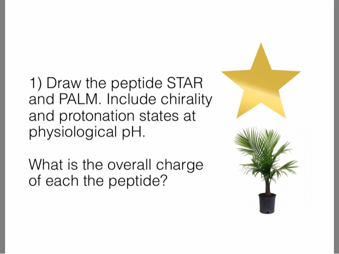 1) Draw the peptide STAR and PALM. Include chirality and protonation states at physiological pH What is the overall charge of each the peptide?