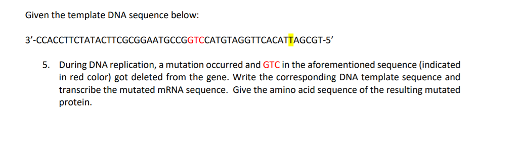 Given the template DNA sequence below: 3-CCACCTTCTATACTTCGCGGAATGCCGGTCCATGTAGGTTCACATTAGCGT-5 5. During DNA replication, a mutation occurred and GTC in the aforementioned sequence (indicated in red color) got deleted from the gene. Write the corresponding DNA template sequence and transcribe the mutated mRNA sequence. Give the amino acid sequence of the resulting mutated protein