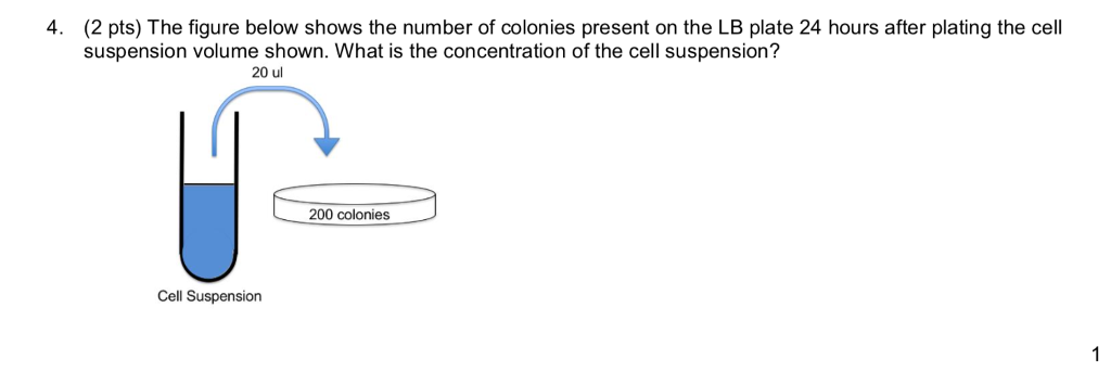 4. (2 pts) The figure below shows the number of colonies present on the LB plate 24 hours after plating the cel suspension volume shown. What is the concentration of the cell suspension? 20 ul 200 colonies Cell Suspension