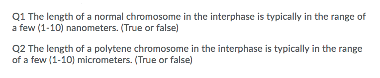 Q1 The length of a normal chromosome in the interphase is typically in the range of a few (1-10) nanometers. (True or false) Q2 The length of a polytene chromosome in the interphase is typically in the range of a few (1-10) micrometers. (True or false)